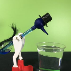 Drinking bird science experiment - drinking bird starting to bend over