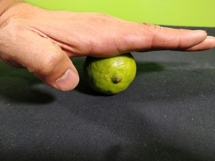 A simple Homemade Lemon Battery - roll the lemon, lime or orange, juicing it