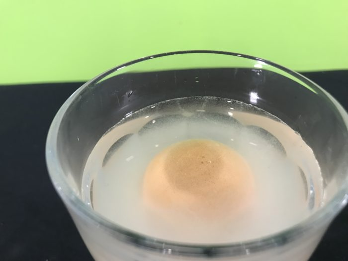 Model the dead sea science experiment - egg floating in water