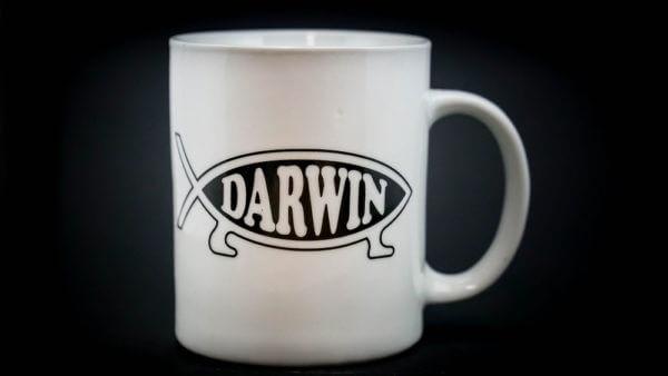 Darwin coffee mug