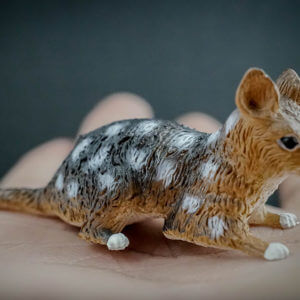 Eastern quoll replica
