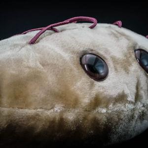 Giant E. coli plush toy