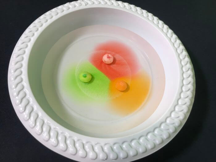 Skittle science experiment - Skittles in the plate after 1 minute