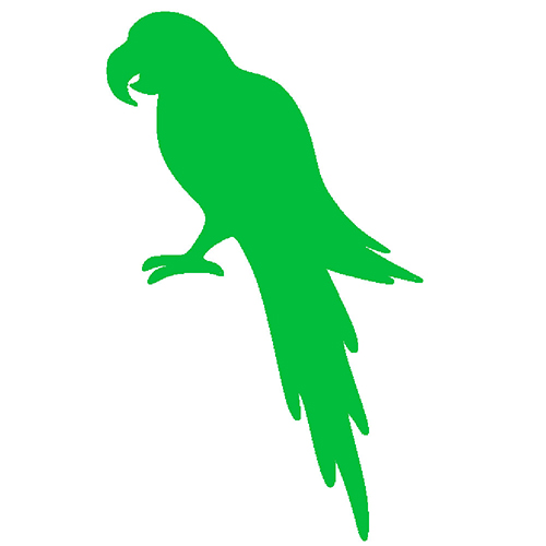 Green parrot in picture