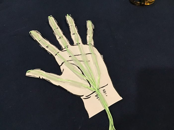 Hand model getting displayed on a blue background