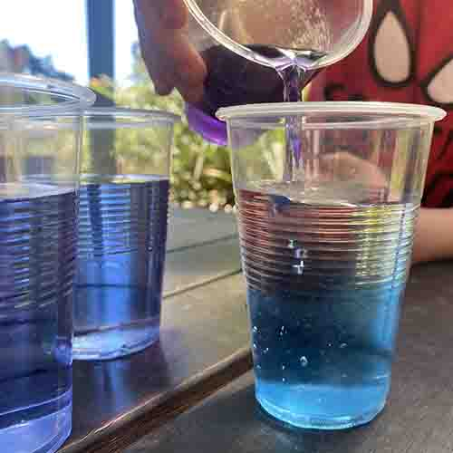 Pouring red cabbage juice into a cup of clear water and the solution is turning aqua