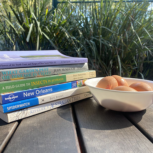 A stack of books and 4 eggs in a white bowl