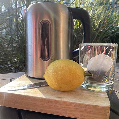 A metal kettle, knife, glass, tea bags on a wooden chopping board in sunlight