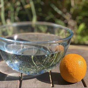 An orange next to a bowl of water on a table
