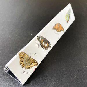 Butterfly mirrorscope side 1 showing 4 butterflies