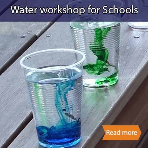 Two cups of water, one with blue food colouring and the other with green sinking down to the bottom of the cups